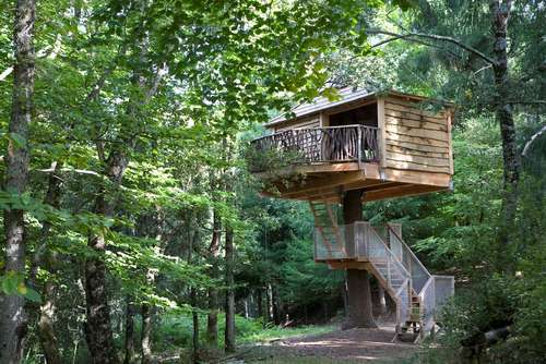 tree house in wayanad