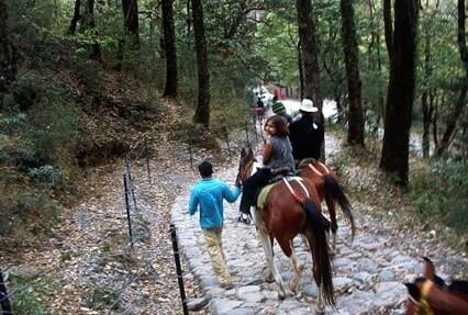 horse riding in uttarakhand