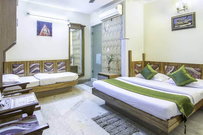 room at treebo natraj delhi