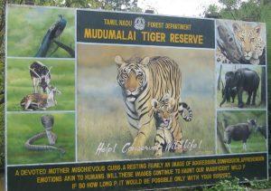mudumalai national park