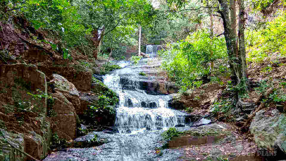 Kiriburu Saranda Forest