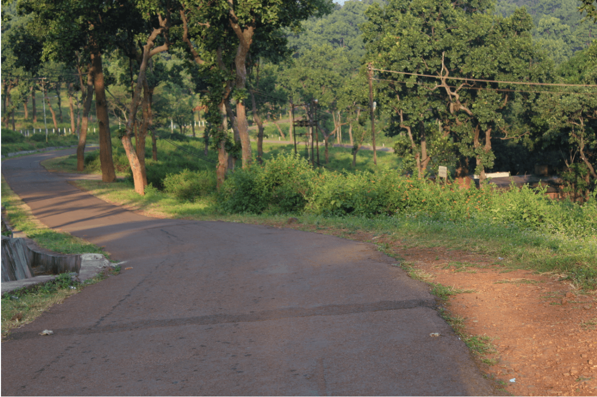 Sarandha forest Jharkand
