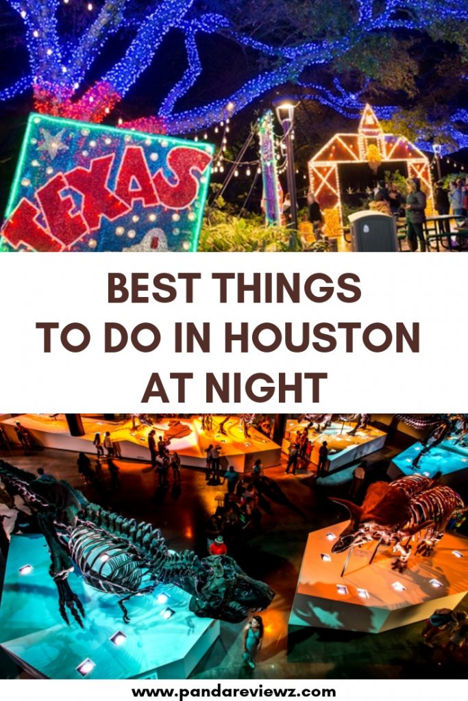 Things to do in houston at night