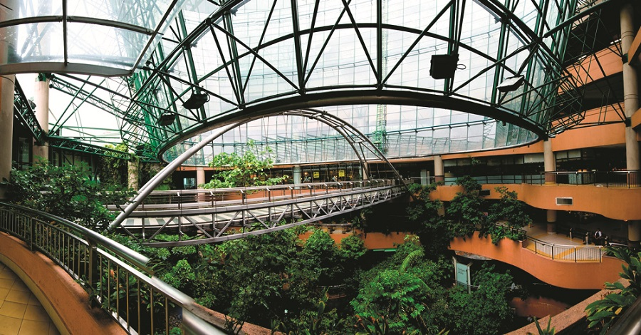 rainforest in 1 utama