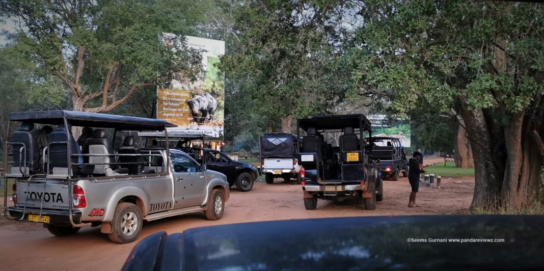 wilpattu national park safari entry